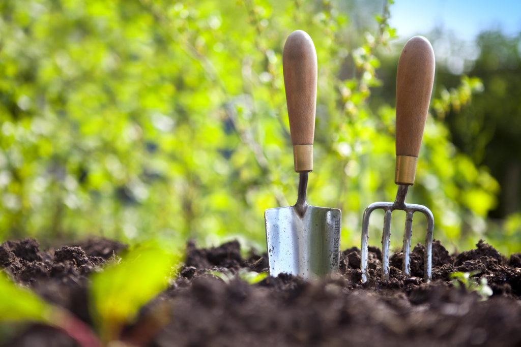 Garden Hand Tools Photo Credit: cjp (iStock).