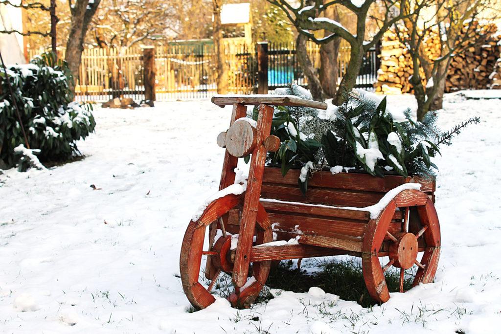 Winter Garden Photo Credit: elPadawan (Flickr).