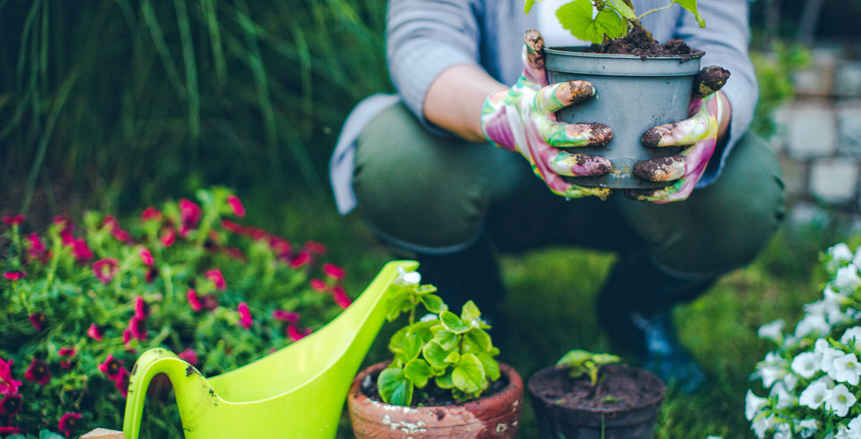 4 Incredible Gift Ideas For Gardeners