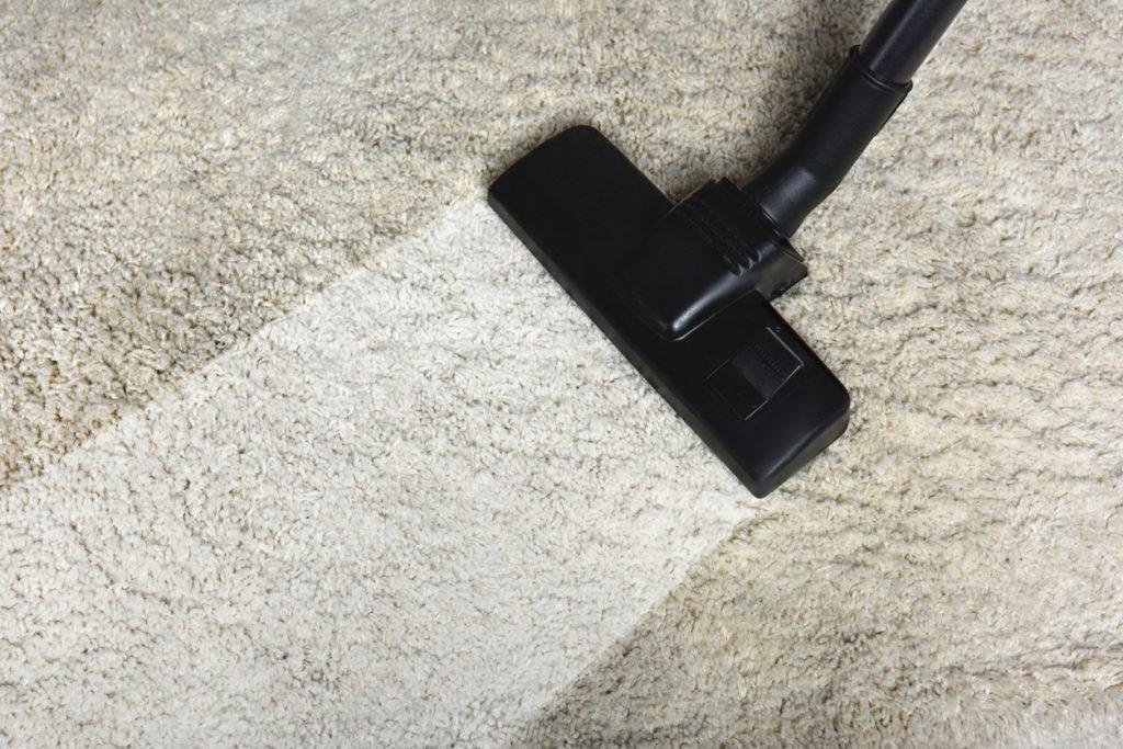 Cleaning, Vacuum, Photo Credit: LightFieldStudios (iStock).
