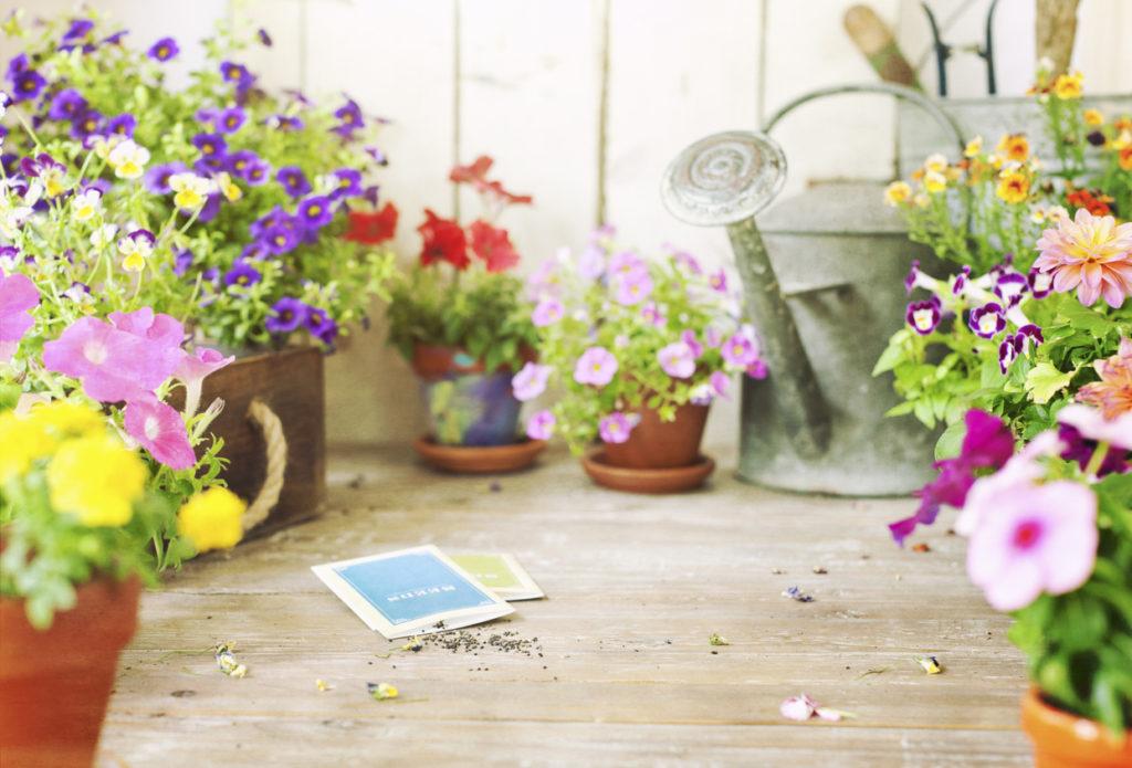 Gardening, Photo Credit: Liliboas (iStock).