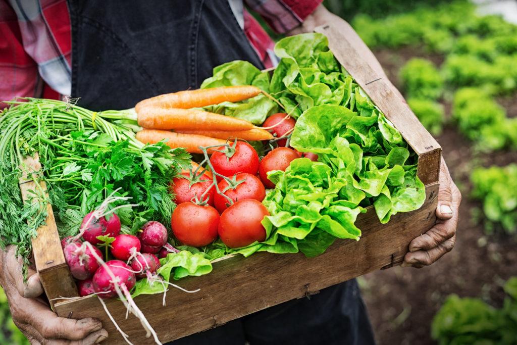 Gardening, Photo Credit: valentinrussanov (iStock).