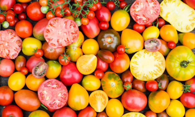5 Fresh-Garden Tomato Recipes