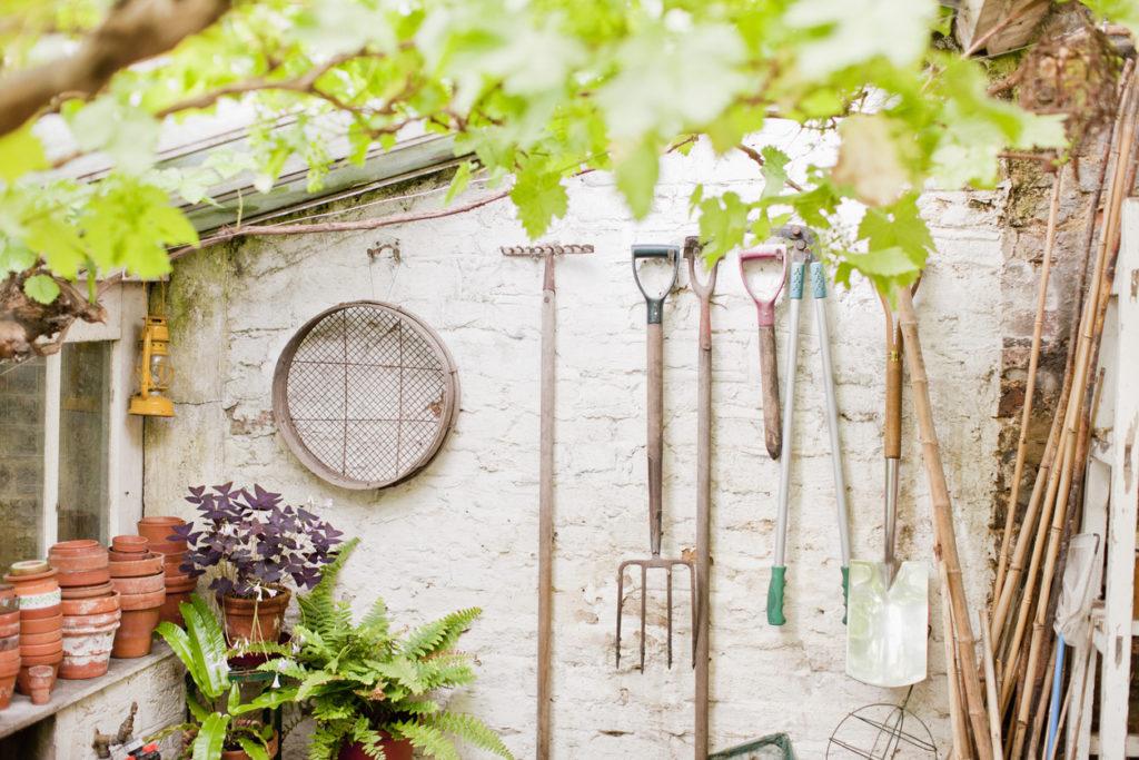 Gardening, Photo Credit: Tom Merton (iStock).