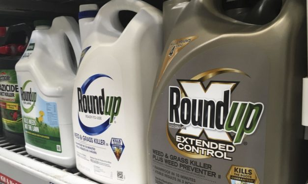Roundup weed killer is major factor in man's cancer