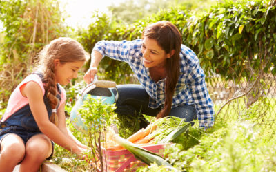Year-round gardening activities, kids included